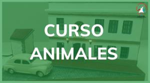 Curso de Animales